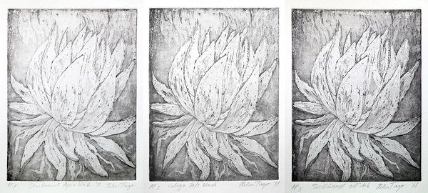 Agave. Testing different etching inks.