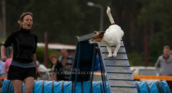 30.05.-2.06.2013, International All Breeds Cup Kozienice's (Poola) / Foto Aneta Ciupinska