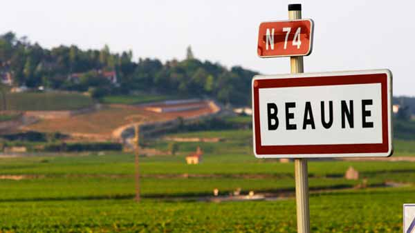 Head towards Beaune to see the vines and taste the wines