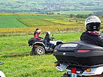 Quad biking in the vines