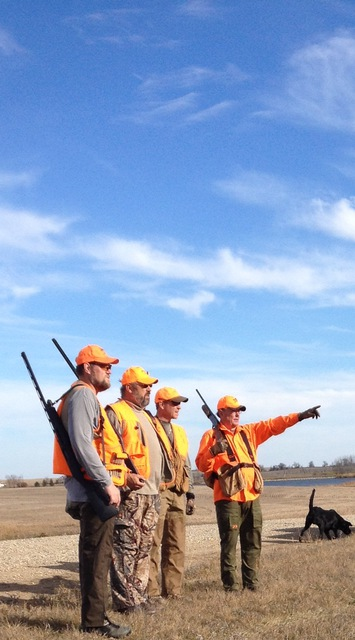 Pheasant strategy session