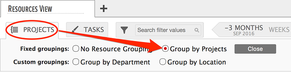 Project Portfolio Management enabled by resource grouping