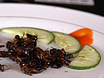 fried grasshoppers, tasted like burnt bread