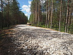 road meant for heavy forest machinery