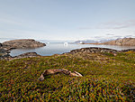 landscape with a fish, Kulusuk, Greenland