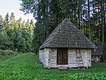 forest hut at Lõunatipu
