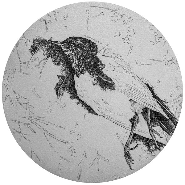 Memories III. Graphite, diameter 25 cm, 2018