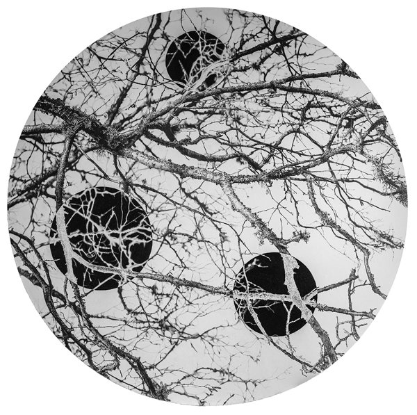 Negative progress. Graphite, diameter 100cm, 2016