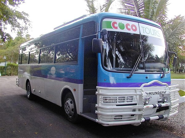 Dominican airport transfers: 37-seater coach