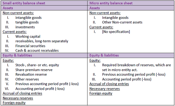 Balance sheet: small and micro entry