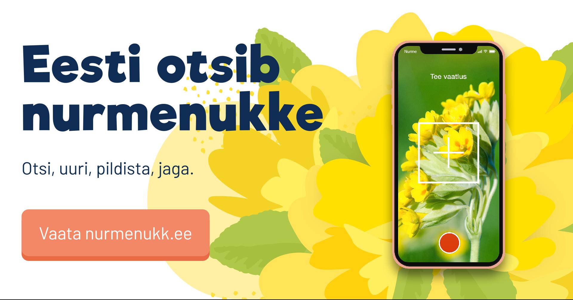 """7cd7095113b Maikuus puhkeb õide üle-eestiline teaduskampaania """"Eesti otsib nurmenukke"""""""