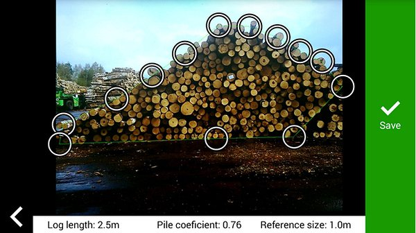 Meadsurement-of-timber-logs-an-example