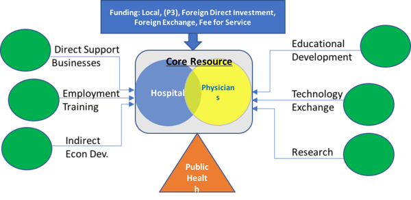 Healthcare Micro-Economy – Rfp Global