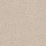 LIGHT COLD BEIGE 0120