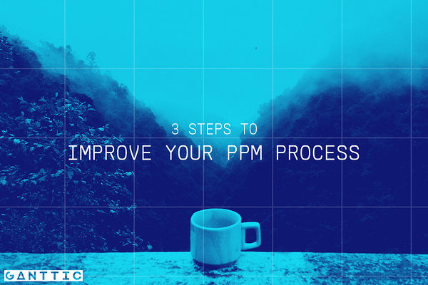 3 steps to effective project portfolio management process