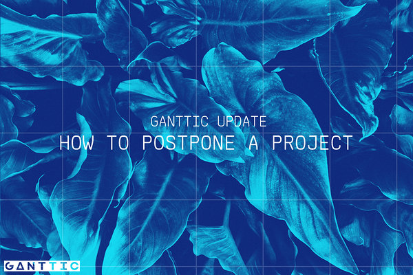 how to postpone a project.
