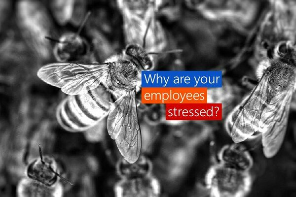 Why are your employees stressed?