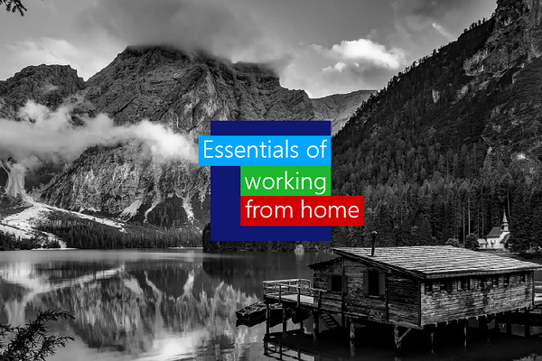 Work from home essentials your employees need to work from home permanently.