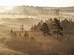 autumn sunrise in Jussi moor, Estonia