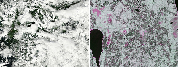 Figure 2. NASA MODIS Terra image (left) and Sentinel-1 SAR image (right) from July 31, 2015.