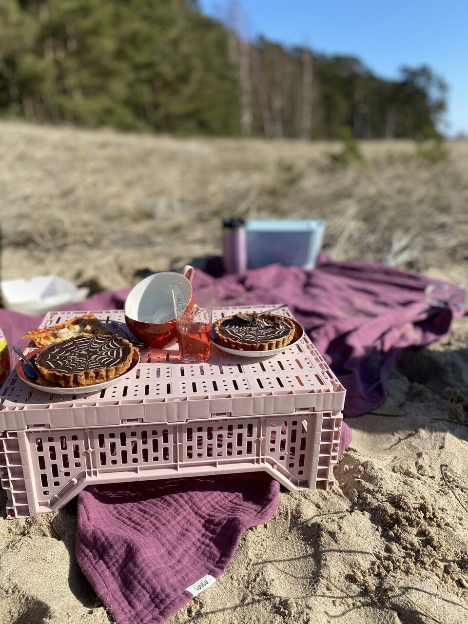 Pildil on Luulu musliintekk piknikulinana. Toon ploomililla.