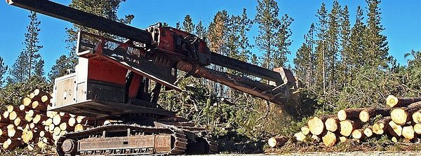 Logging Equipment Loans